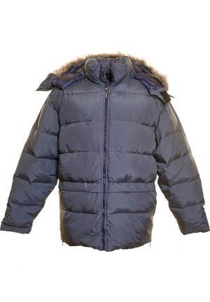 21299-9440 Куртка-пуховик Trussardi